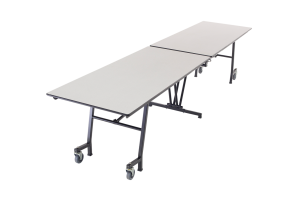 Mobile Tables/Benches